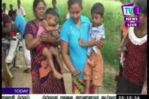 Tv1NewsLK/Tv1 Sinhala Prime Time, Tuesday, October 2017,8PM (31-10-2017)